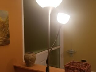 Dual tall lamps